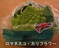 Romanesco_cauliflower