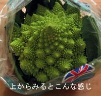 Romanesco_cauliflower_spiral