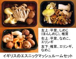 Mushroom_ethnic