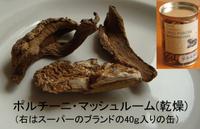 Mushroom_porcini