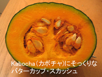 Kabocha_buttercup