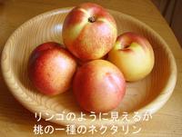 Nectarine_like_apple