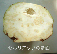 Celeriac_inside