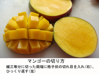 Mango_how_to_cut