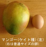 Mango_keitt