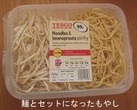 Bean_sprout_noodle