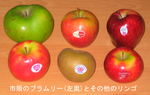 Bramley_and_others