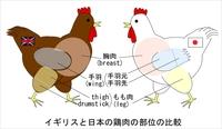 Chicken_parts