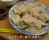 Coriander_dumpling