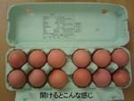 Egg_open_1