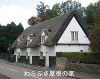 House_thatched