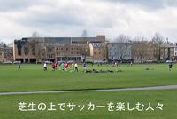 Lawn_football