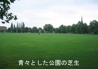 Lawn_square