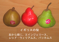 Pear_pachams_etc