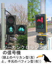 Pedestrian_crossingtoucan1