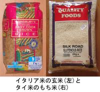 Rice_bg