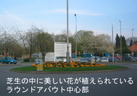 Roundabout_flower_1