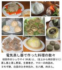 Steamer_dish