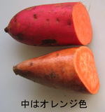 Sweet_potato_inside_1