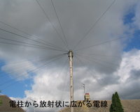 Telegraph_pole_radial