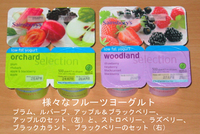 Yogurtfruits